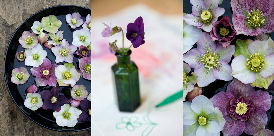 Sweet Peas for Summer / Bloomsbury - Photographs by Jill Mead